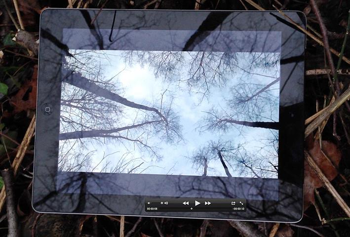 Computer-Screenshot eines Quicktime Movies, inklusive Timecode Anzeige, das von einem Smart Phone aufgenommen wurde, welches wiederum einen Tablet Computer auf dem Waldboden unter Bäumen zeigt, die auf der fieldsite wachsen, gleichzeitig eine Aufnahme diese Bäume abspielend, sie somit aus der selben Position zeigend, wodurch die gleichen Bäume auch auf der Oberfläche selbigen Tablets gespiegelt werden, aufgenommen von einem sich dort aufhaltenden digitalen Immigrant, der auf einem, von einem Grossvater vererbten Grundstücks steht, das wiederum trotz einer drei Meter dicken Schicht von Weltkriegsschutt unter dem Schutz der striktesten Landschaftsschutzvorschriften steht und nun neuen Bestimmungen zugefügt werden soll…